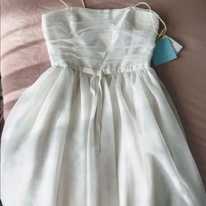 CeCe dress - tulle fit and flare dress. NWT